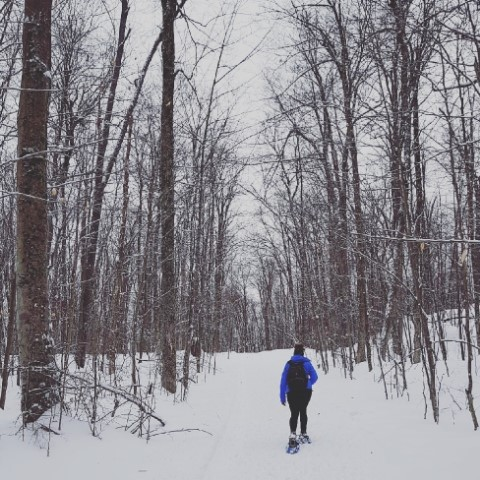 Trail 70- An 8.6k Snowshoe and Fat Bike Trail in Gatineau Park ... c83fbf158